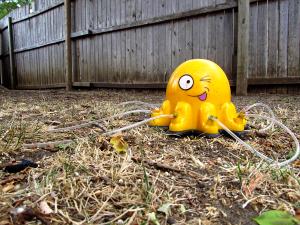 Happy Sprinkler Octopus